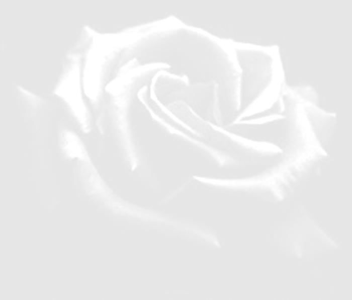 rosa poetica
